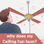 Why Does My Ceiling Fan Hum Image